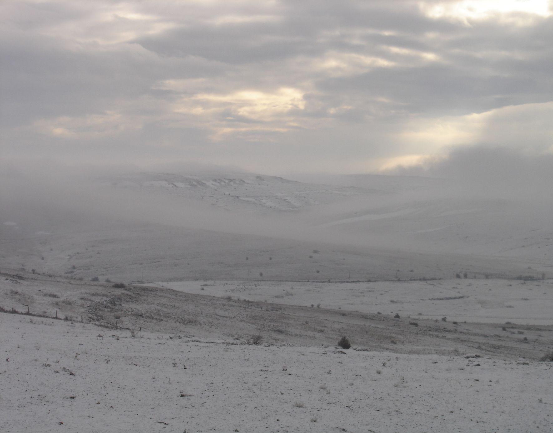 paysage_neige